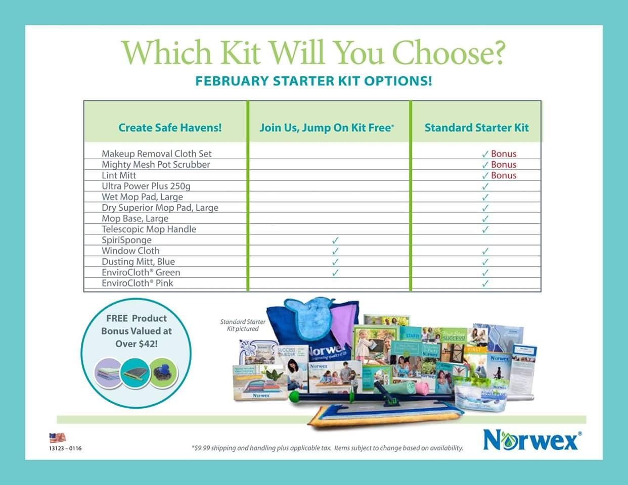 Join Norwex as a consultant for free this month!