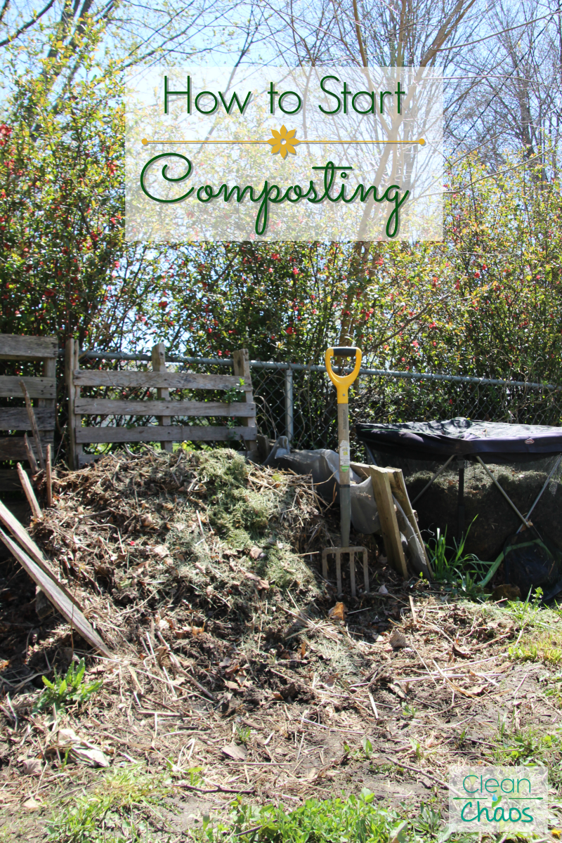 I didn't know how to start composting, so I asked an expert!